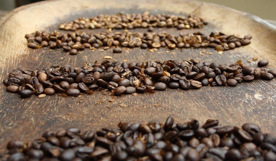 Spekulanci zmniejszają pozycje krótkie na kawie