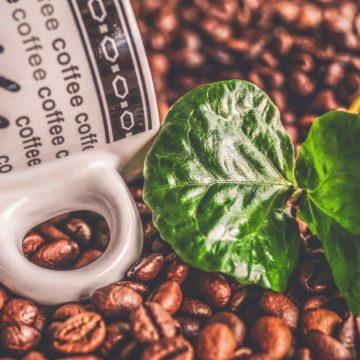 Pierwsze spadkowe zawahanie na cenie kawy. Sytuacja w Chile wspiera ceny miedzi